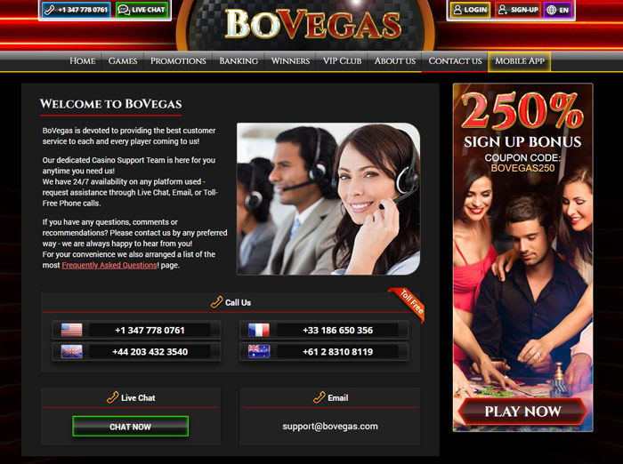 BoVegas Casino support